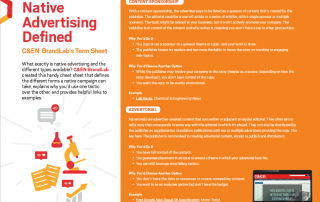 BrandLab native advertising terms